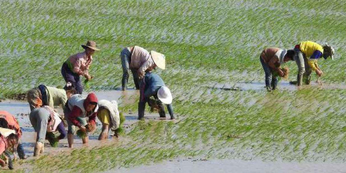 Gender and water governance in the Mekong region