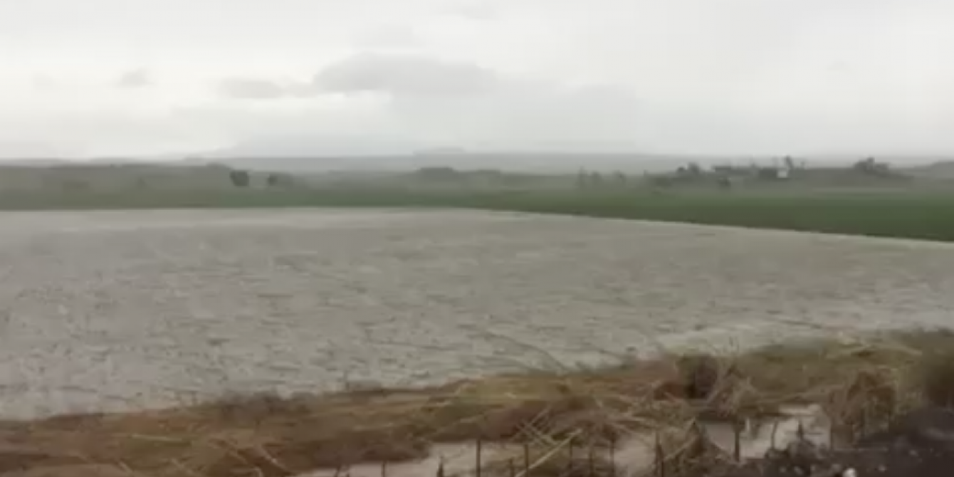 Oxfam Mangkhut Aftermath - Damage to agriculture
