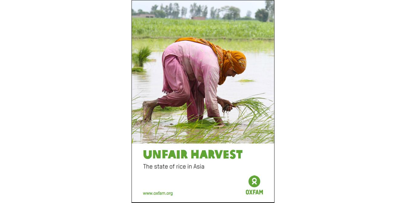 Unfair Harvest: The State of Rice in Asia