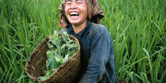 Oxfam - Mekong Regional Water Governance - Gender Impact Assessment Manual