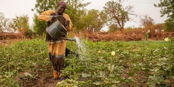 Des femmes soutenues par Oxfam pour la production de culture de contre saison ont vu leurs récoltes pourrir à cause de la COVID19
