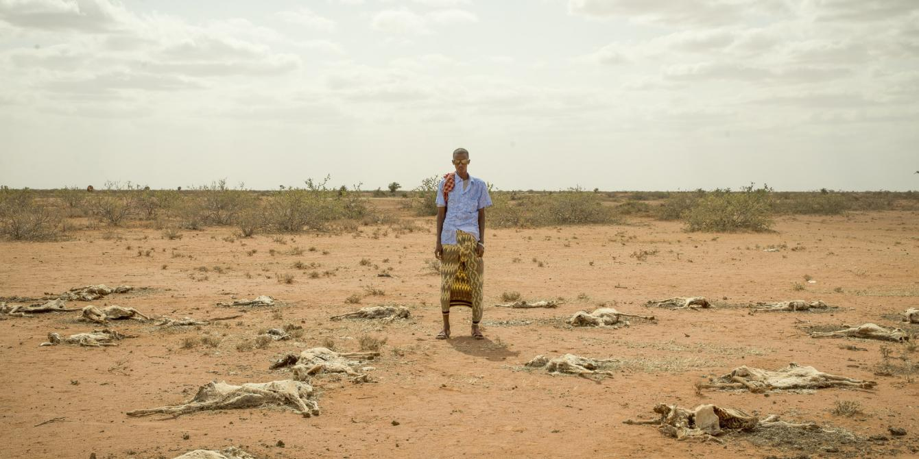 A man standing by carcasses of livestock in Somaliland. Allan Gichigi / Oxfam