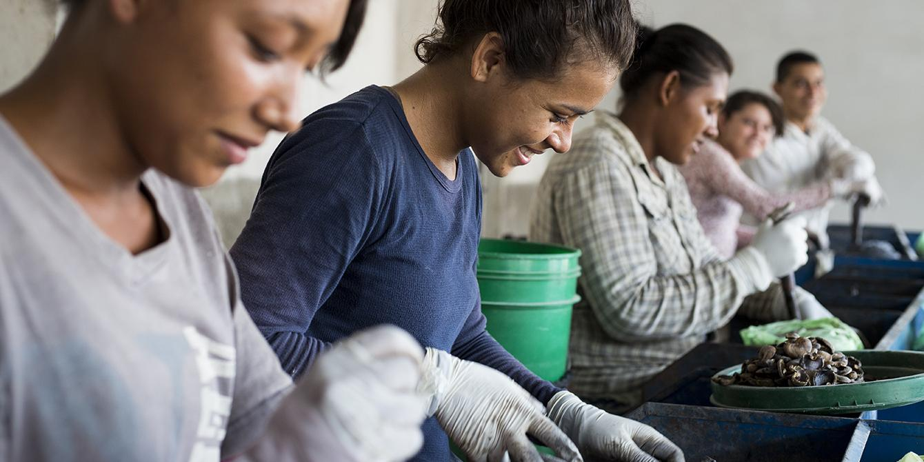 Productoras de marañón beneficiadas por iniciativas de empoderamiento económico que promueve el Enterprise Development Programme. Foto: Eleanor Farmer / Oxfam en Honduras