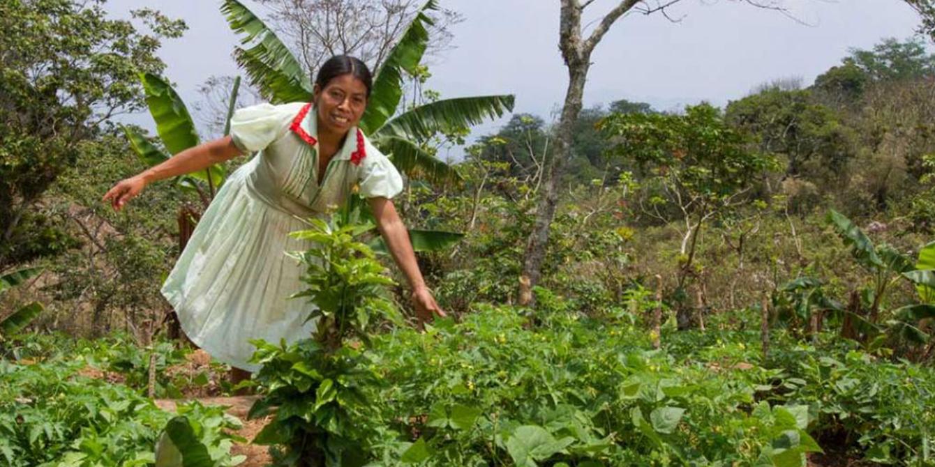 María Julia Pérez muestra el jardín que plantó con la ayuda de Oxfam para combatir la inseguridad alimentaria.