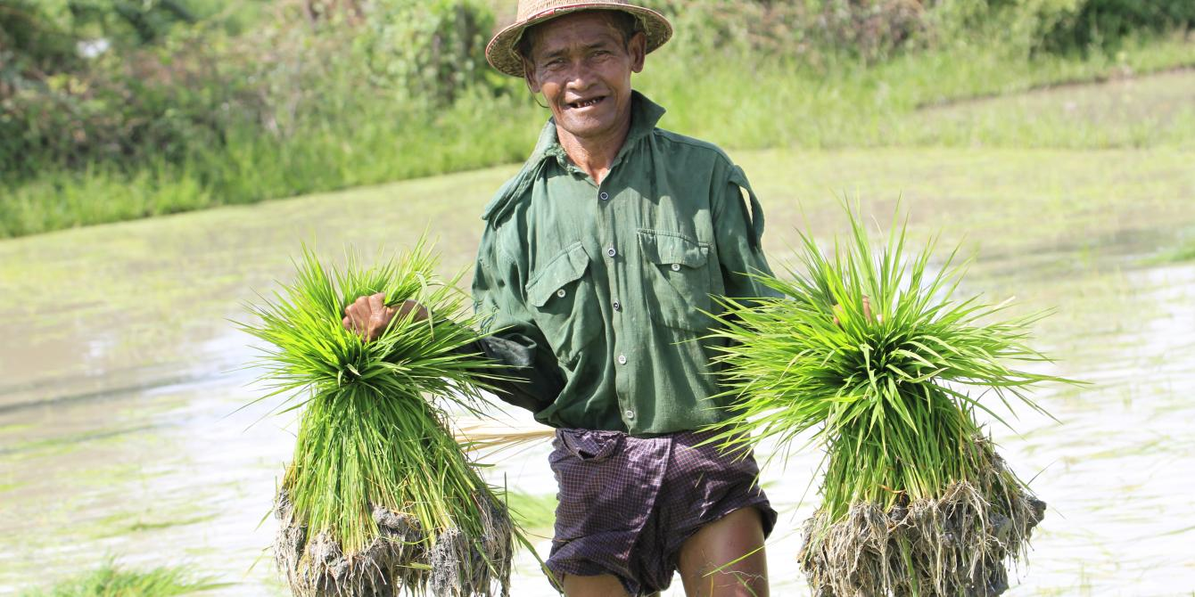 A farmer in Dryzone where Oxfam implemented livelihoods project funded by LIFT. Photo by: Hein Latt Aung/ Oxfam