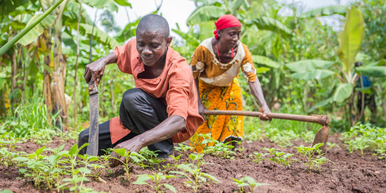 Small holder farmers in Burundi