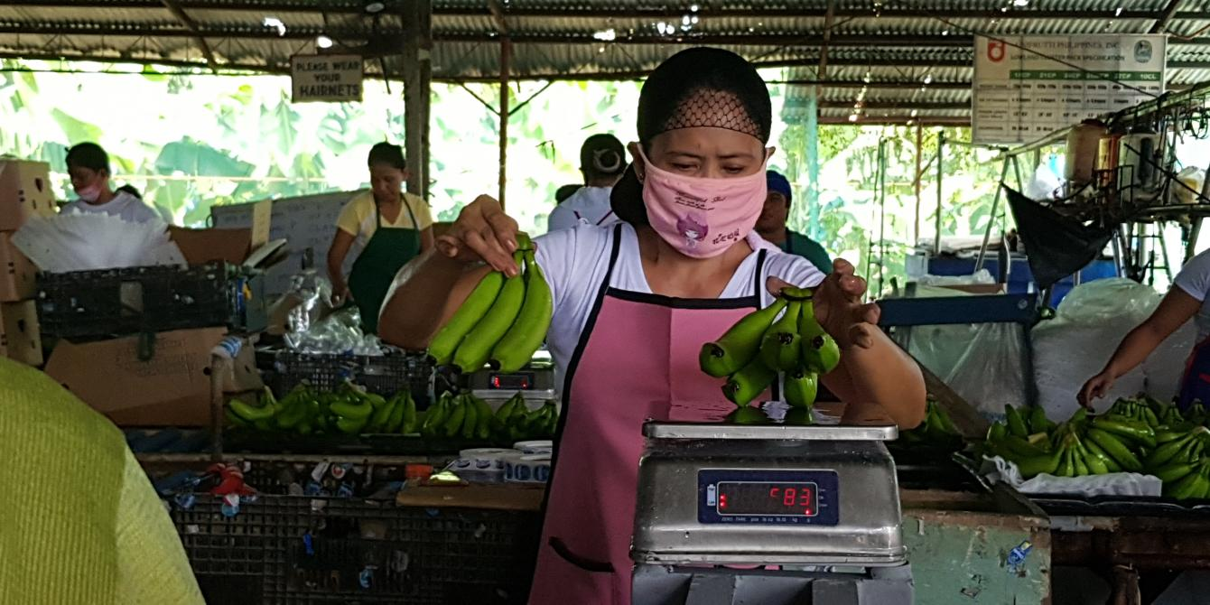 A worker weighs bananas in a packing plant in Davao de Oro. Most women in the banana farming industry work in these plants, each handling hundreds of trimmed banana clusters per day. (Photo: Dada Grifon/IDEALS)