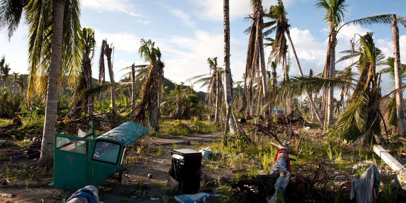 Along the typhoon's devasting path more than 33 million coconut trees were destroyed by 195mph winds. It will take between six to eight years for the coconut plantations to grow back.(Photo: Eleanor Farmer/Oxfam)