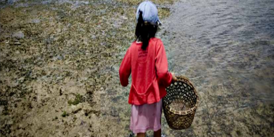 A little girl gleans shells on the island of Mahaba, Surigao del Sur, to augment the family income. On average, the poorest Filipino households live on less than a dollar a day, 60% of which is spent on food. (Original photo: Veejay Villafranca)