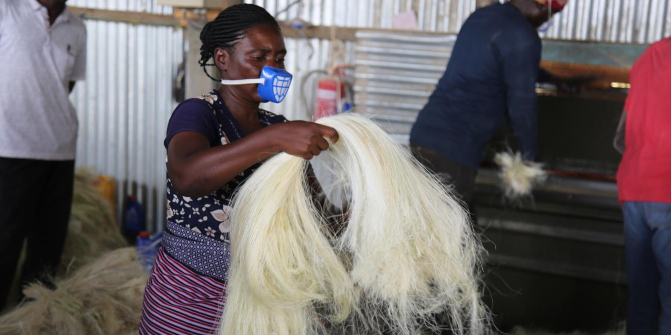 Tabu Hashimu inspecting the quality of brushed sisal fibre at SHIWAMKI (Federation of Sisal Producers and Processors in Kishapu) factory in Kishapu district (Photo credit: Kisuma Mapunda/Oxfam)
